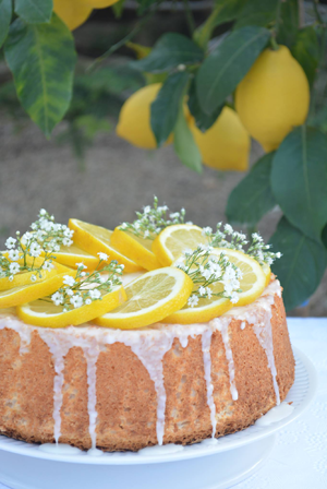 limon-lemon-bizcoho-bundt-cake-tarta-cookies-galletas-mousse-merengue-curd