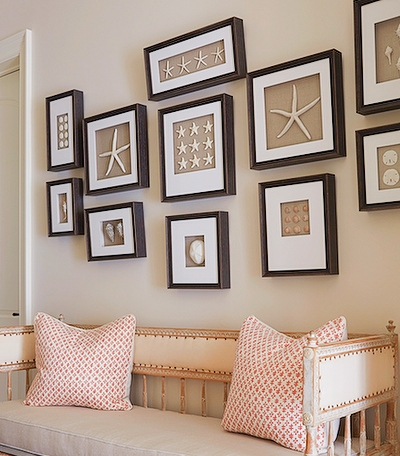 Framed Starfish Shell Gallery Wall Idea