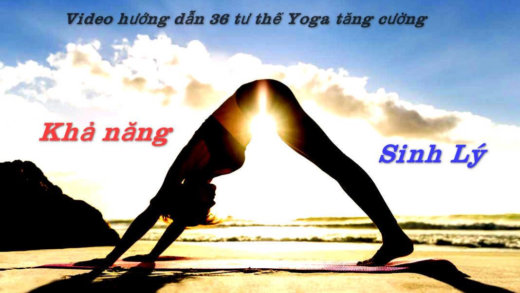 Video hướng dẫn 36 Thế Yoga tăng cường sinh lý .