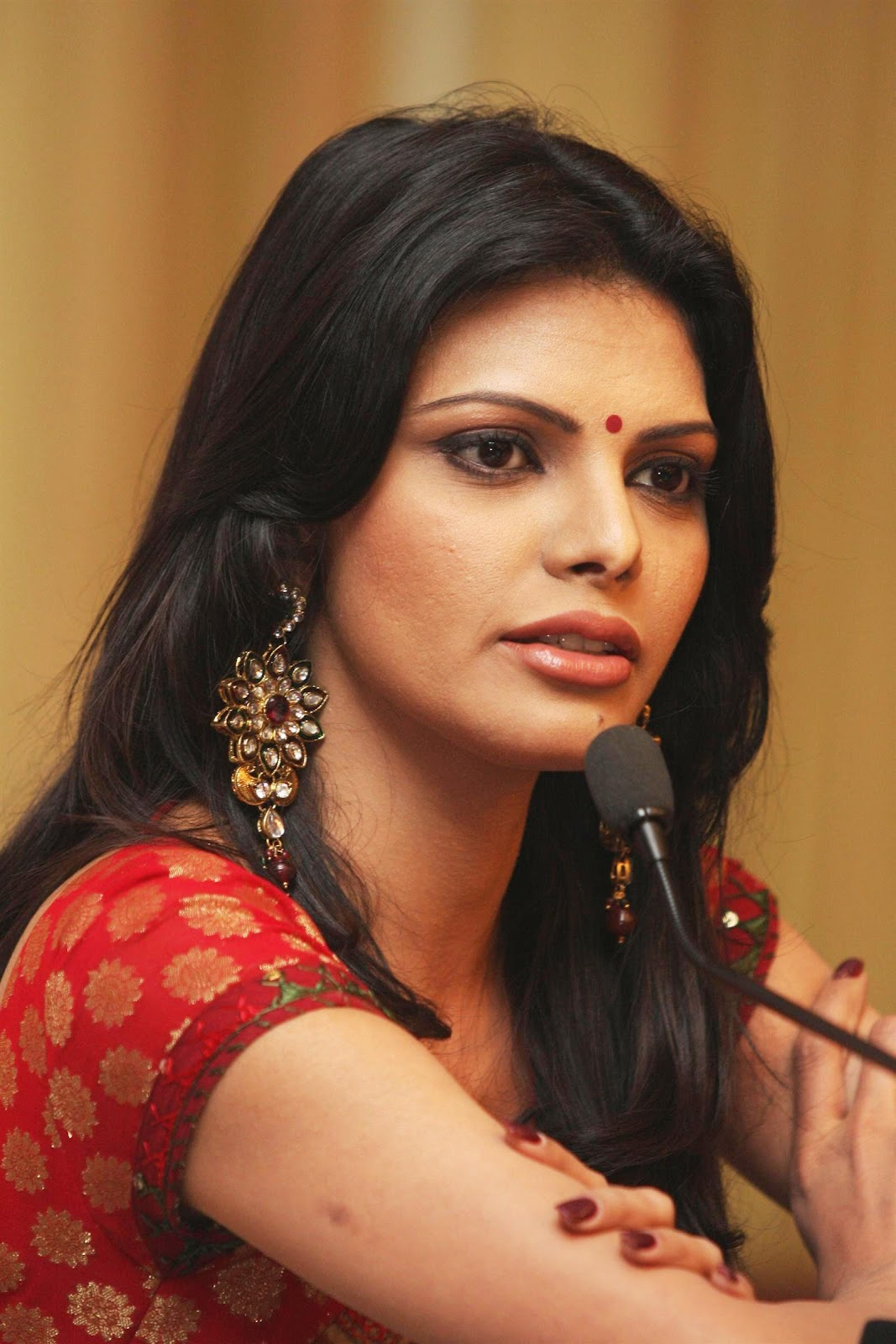 High Quality Bollywood Celebrity Pictures Sherlyn Chopra -1669