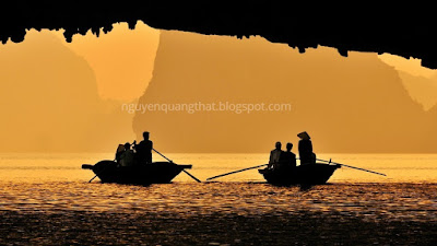 Lift the ban on kayaking to Halong cruises