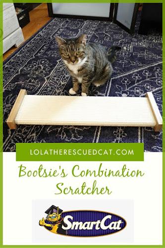 Bootsie's Combination Scratcher Pinterest Grahic