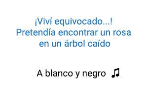 Silvestre Dangond A Blanco y Negro significado de la canción.