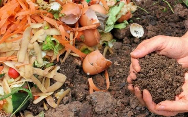 How To Make Liquid Fertilizer From Kitchen Waste
