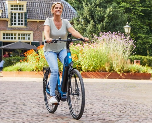 Gazelle elektrische fietsen e-bikes