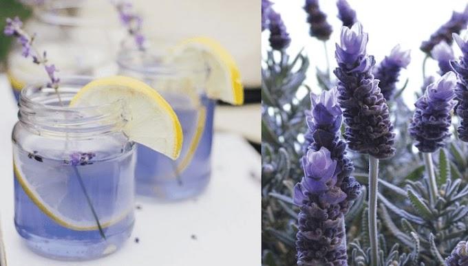 Esta limonada morada ayuda a aliviar los dolores de cabeza, las migrañas y la ansiedad