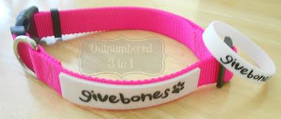 Givebones collar