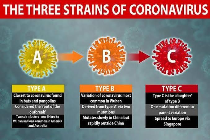 Mutasi corona masuk Indonesia