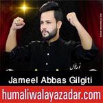 https://aliwalayazadar.blogspot.com/2020/08/jameel-abbas-gilgiti-nohay-2021.html