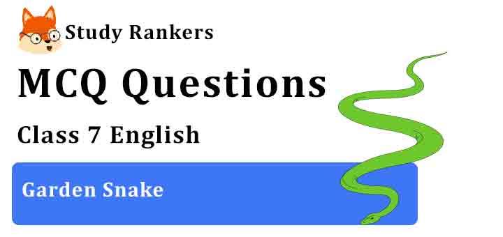 MCQ Questions for Class 7 English Garden Snake Honeycomb