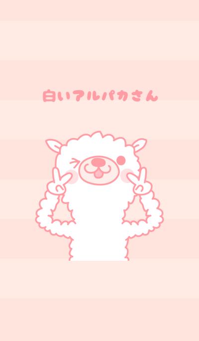 White Alpaca (Pink tone)