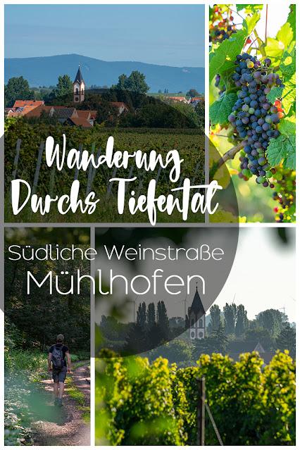 Durchs Tiefental bei Mühlhofen | Wandern Südliche Weinstraße | Billigheim-Ingenheim | Wanderung Pfalz 30