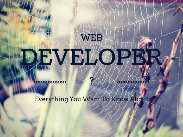 What is A Web Developer