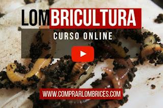 Lombricultura Curso Online