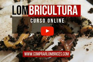 Curso de Lombricultura en Youtube