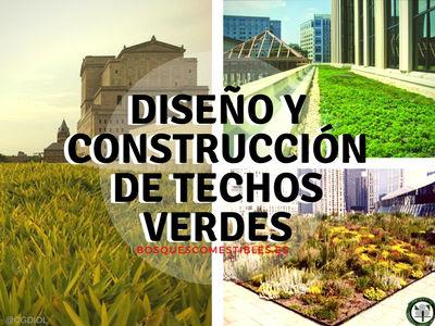 Los techos o cubiertas verdes contra la contaminación en las ciudades