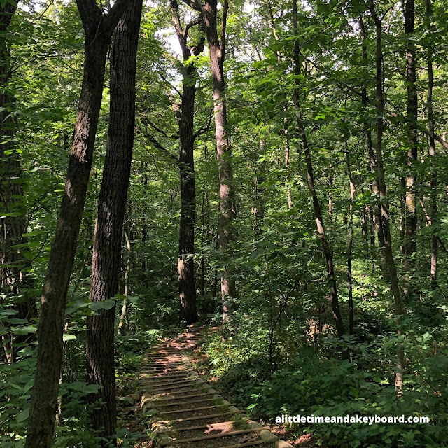 Descending down the Flintrock Trail into the wilderness at Blue Mound State Park
