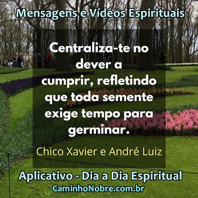 Centraliza-te no dever a cumprir, refletindo que toda semente exige tempo para germinar. Chico Xavier e André Luiz Aplicativo Dia a Dia Espiritual