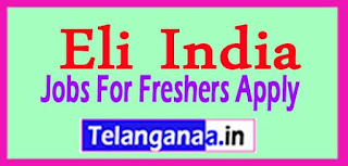 Eli India Recruitment 2017 Jobs For Freshers Apply