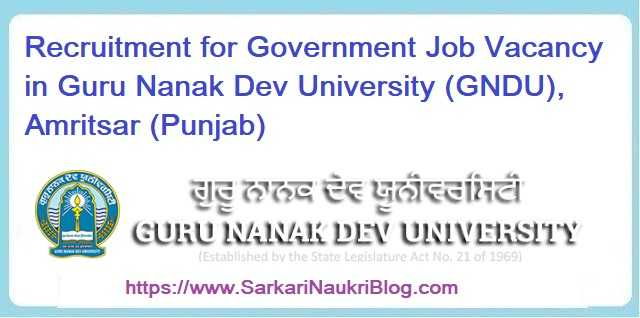 Government Job Vacancy GNDU Amritsar