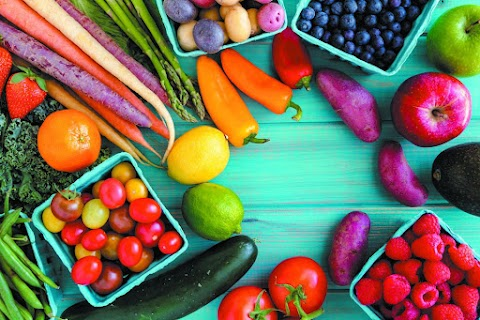 Beginning A Fruits & Vegetable Export & Handling Business