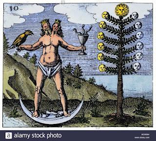 A figura do hermafrodita na alquimia