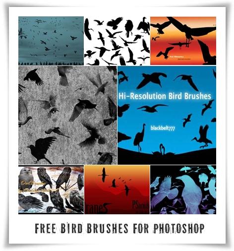 Кисти для Фотошопа с изображением птиц