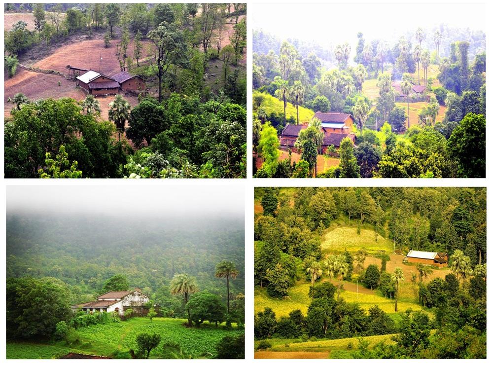 आमखुंट अलीराजपुर जंगल-aamkhunt-alirajpur