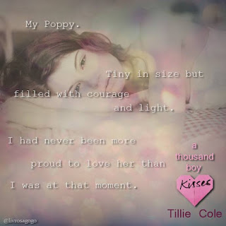 quote do livro A thousand boy kisses - tillie cole