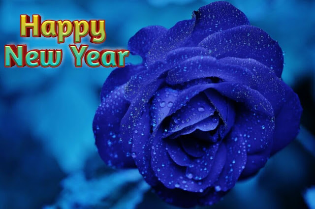 Happy New Year 2020, Happy New Year 2020 Wishes
