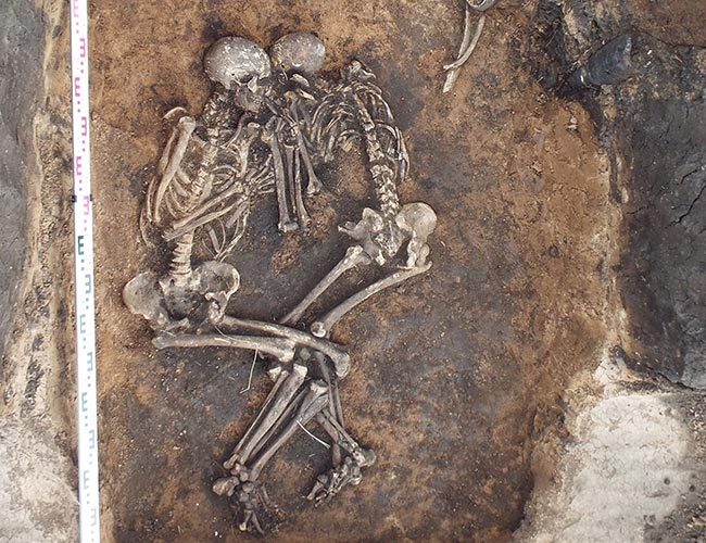 Penelitian Oldest Yersinia pestis genome of bubonic plague