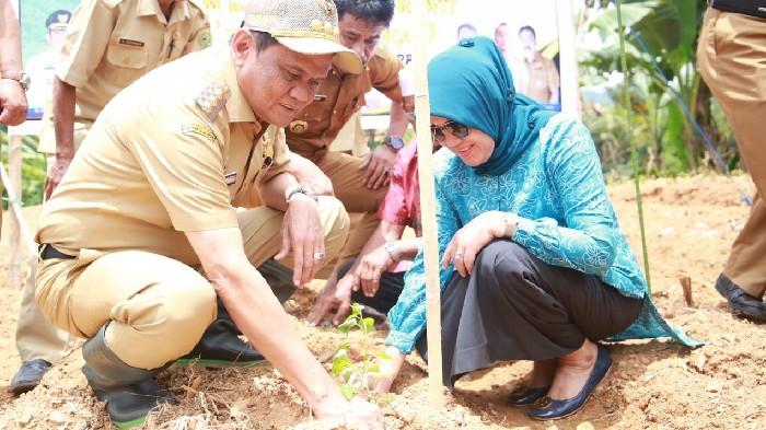 Kementerian Pertanian Dukung Pengembangan Kawasan Cabai dan Bawang di Barru