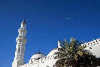 صور المسجد النبوي