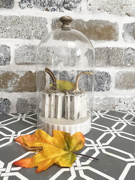 DIY pumpkin and cloche with fall leaf