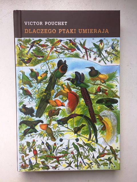 """Recenzje #109 - """"Dlaczego ptaki umierają"""" - okładka książki pt. """"Dlaczego ptaki umierają?"""" - Francuski przy kawie"""