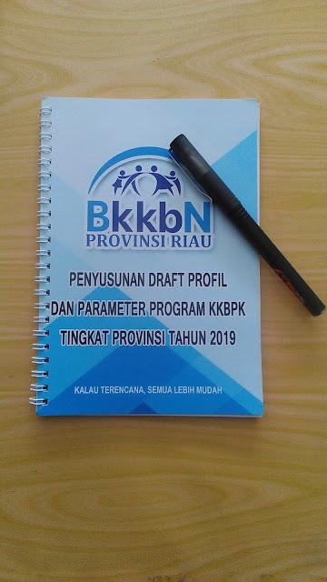Buku Penyusunan Draft Profil BKKBN