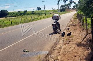 http://vnoticia.com.br/noticia/4222-pipoqueiro-gravemente-ferido-em-acidente-na-rj-224
