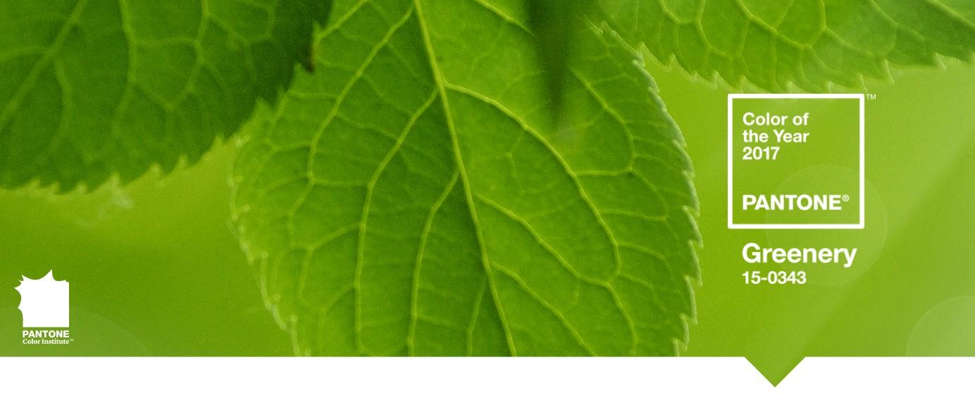 Miss verniz cor pantone 2017 greenery for Pantone 2017 greenery