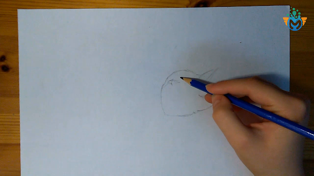 تعليم رسم قطة للمبتدئين بطريقة سهله