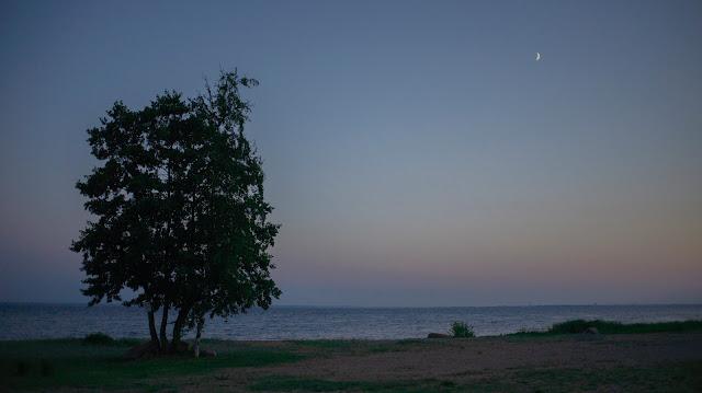 Белые ночи Лисий нос залив море пляж побережье Лахта Питер