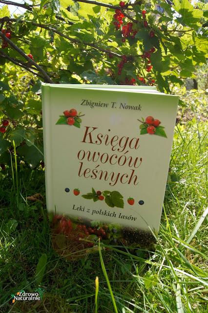 Profesor Zbigniew T. Nowak - Księga owoców leśnych - Wydawnictwo AA i Aromat Smaku