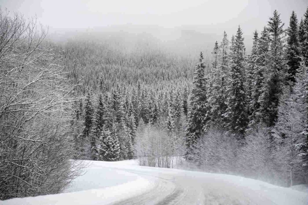 Granite Hills Trail -- Winter