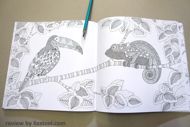 Adult Coloring Books 1: An initial review - Liz Steel : Liz