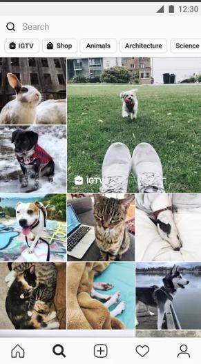 تحميل تطبيق Instagram
