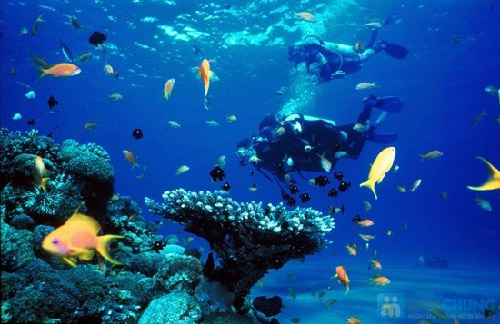10 tourist attractions of Nha Trang
