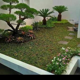 Jasa Tukang Taman Cimanggu Bogor