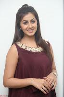 Nikki Galrani in a Brown Shining Sleeveless Gown at Nakshatram music launch ~  Exclusive 066.JPG