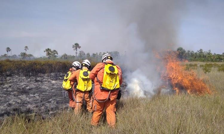 Bombeiros reforçam combate aos incêndios florestais na Bahia