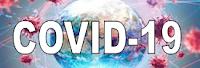 https://www.idee.es/Recursos-COVID-19