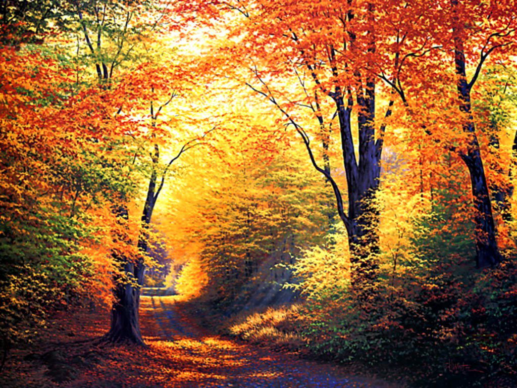 HDIMAGESPLUS: Latest hd autumn wallpapers